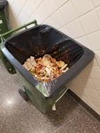 Food Scrape Scraps 2017-11-28 (3).jpg